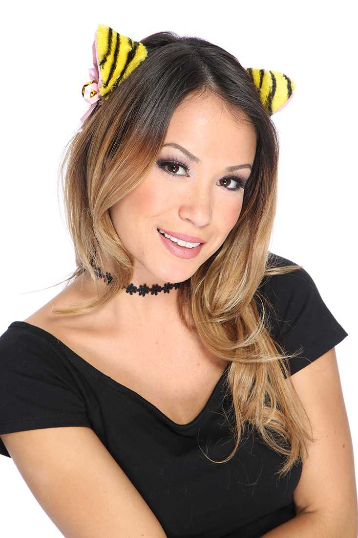 Yellow Tiger Head Band Costume Accessories